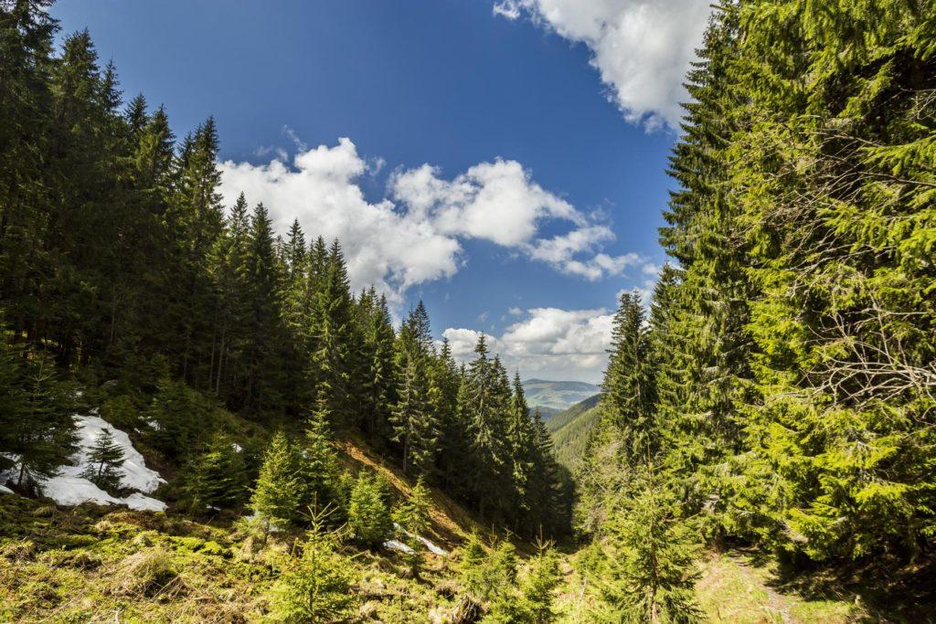 Cestou na Osobitú. Fotograf Branislav Bruder Osobitá Západné Tatry