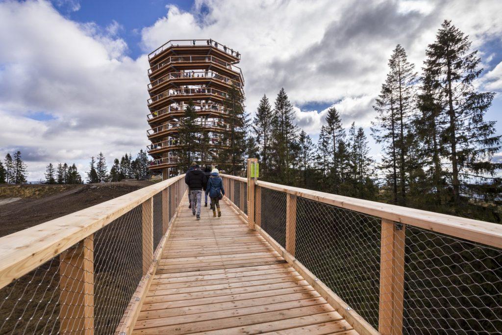 Vyhliadková veža na Chodníku korunami stromov Branislav Bruder
