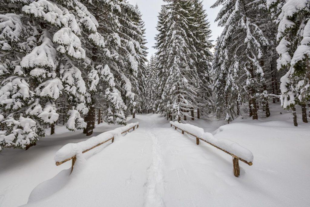 Cestou k Roháčskému vodopádu, zasnežená hrajna, sneh, Branislav Bruder