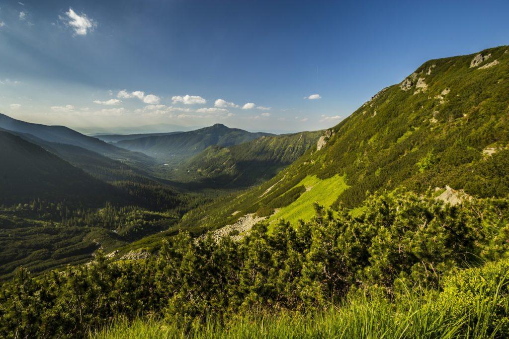 Spálená dolina. Fotograf Branislav Bruder