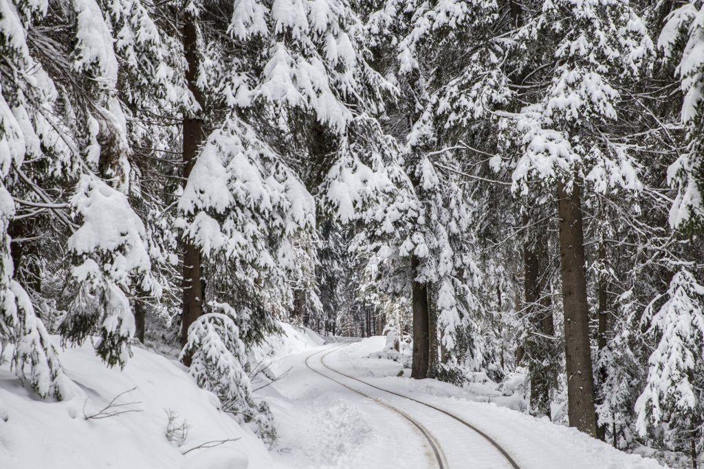 Zimná krajina, Oravská lesná železnica