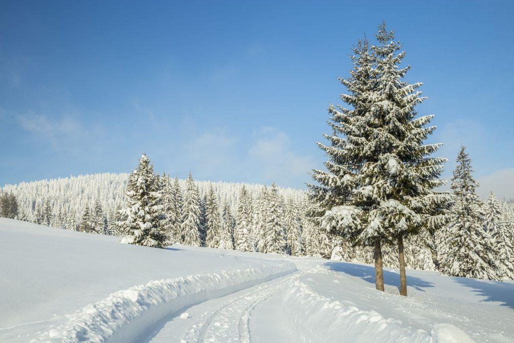 zimna, fotografia, oravska lesna, historicka zelezinca, fotograf, Branislav Bruder